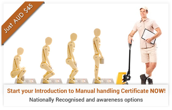 Introduction to Manual Handling Course Online
